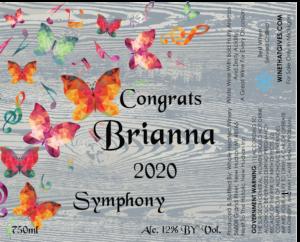 Symphony wood background butterfly-01